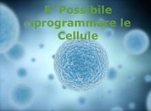 è possibile riprogrammare le cellule